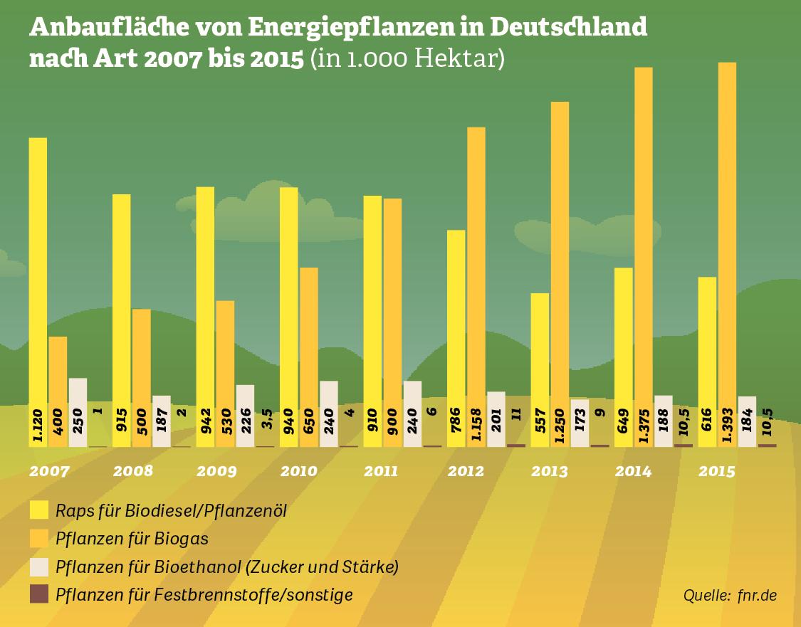 Grafik: Anbaufläche von Energiepflanzen in Deutschland