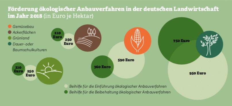Grafik: Förderung ökologischer Anbauverfahren. Quelle: BMEL, 2018