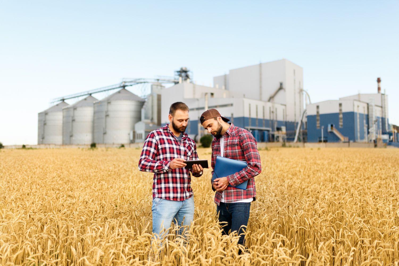 Zwei Junge Männer stehen in einem Weizenfeld und blicken in ein Tablet. Moderne Technologien bieten in der Landwirtschaft ungeahnte Chancen.