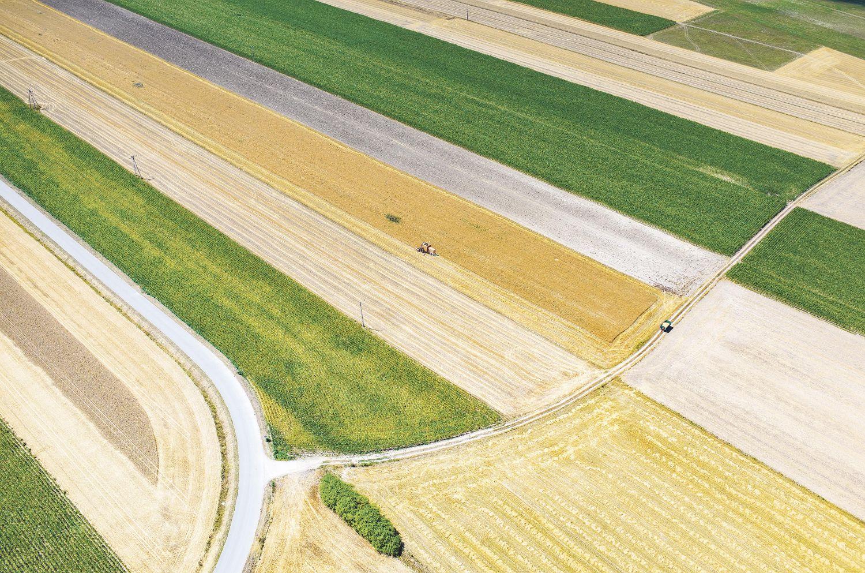 Grüne und braune Felder aus der Vogelperspektive, Thema: Europäischer Markt