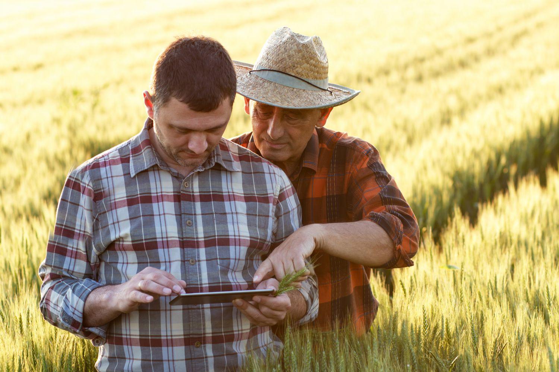 Landwirtschaft 4.0: Zwei Männer stehen im Feld und blicken in ein Tablet