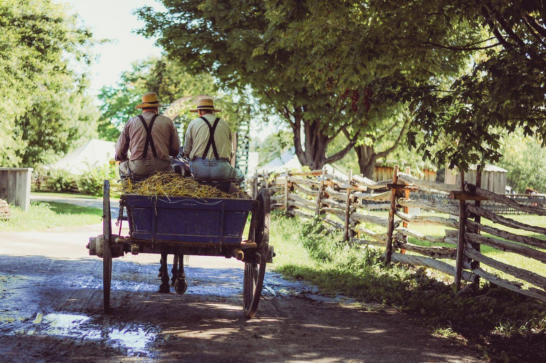 Eine alte Kutsche mit zwei Bauern. Thema: Viehwirtschaft