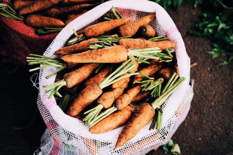 Karotten im Sack, Thema: Gesunde Pflanzen