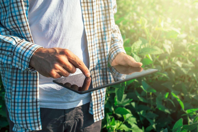 Bauer steht mit einem Tablet vor seinen Pflanzen; Thema: Farming 4.0